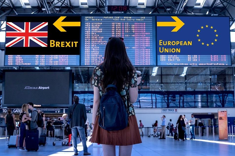 wybory do unii europejskiej i parlamentu